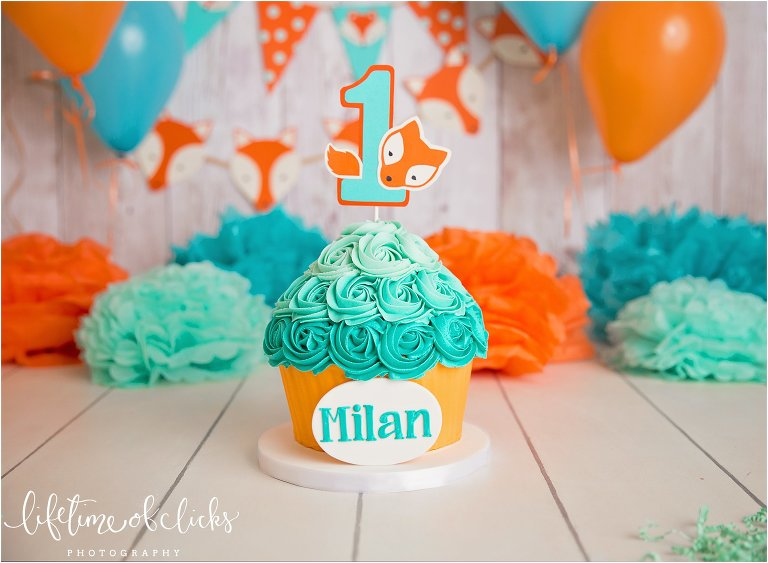 Katy TX Cake Smash Session By Lifetime Of Clicks Photography
