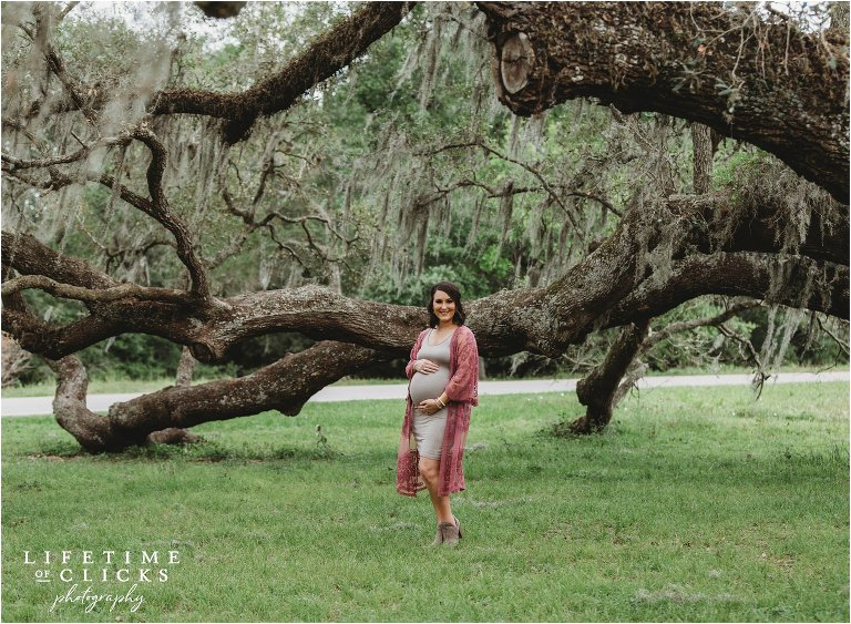maternity photos in a field and next to a moss-covered tree